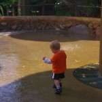 Kallen playing in the water fountains. He was glad to get out oft he stroller and run around.